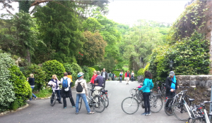 Bikes at the Castle